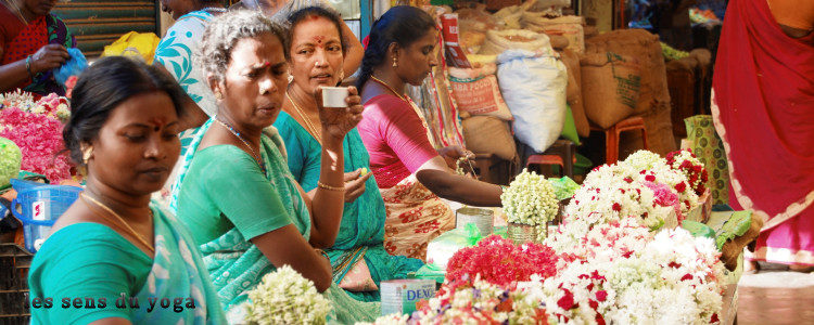 Voyage du 18 février au 3 mars 2017 au Tamil Nadu