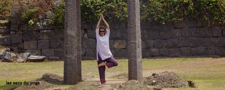Etude de posture : Vrksasana, l'arbre